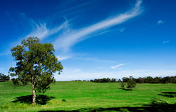 Australisches Ackerland Lizenzfreies Stockfoto