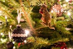 Australisches Weihnachten Stockfotografie