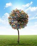 Australisk dollar för pengarträd Royaltyfria Foton
