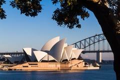 Australisk gränsmärkebyggnad, Sydney Opera House Fotografering för Bildbyråer