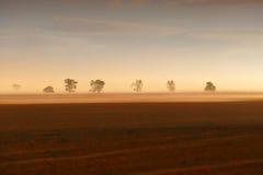 Australisk lantgård för stormby Arkivfoton