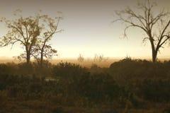 Australisk lantgård för stormby Arkivbilder