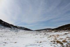 Australisk snö Arkivfoton