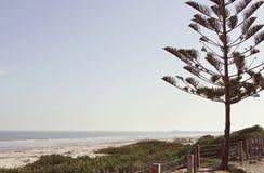 Australisk strand och havlandskap Royaltyfri Fotografi