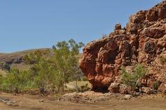 Australisk vildmark vaggar utlöpareflodsäng Arkivfoto