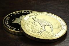 Australiska guld- mynt fotografering för bildbyråer