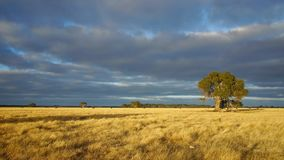 Australiskt landskap