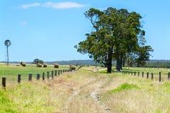 Australiskt lantligt fältlandskap med höstackar Royaltyfri Bild