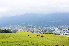 Austria bucolic Royalty Free Stock Images