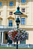 Austria, eisenstadt, schloss esterhazy Stock Photography