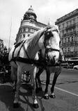 Austria/Fiaker imagenes de archivo