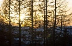 Austria Kitzbuhel Fotografia Royalty Free