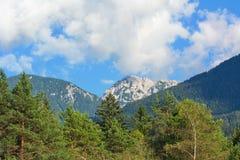 Austria mountain hochobir in nature Royalty Free Stock Photo