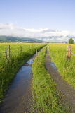 Road to Zell am See Royalty Free Stock Photography