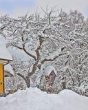 Austria, pequeña capilla roja y árbol cubiertos por la nieve Imagen de archivo libre de regalías
