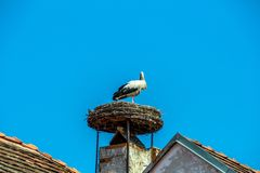 Austria, rust. nest of a stork Royalty Free Stock Photos