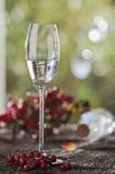 Austria, Salzburg, Rowan berry brandy in glass Stock Photography