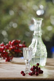 Austria, Salzburg, Rowan berry brandy in glass Royalty Free Stock Image