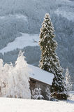 Austria, Salzburg, Snow-covered trees and hut in Altenmarkt-Zauchensee Royalty Free Stock Photos