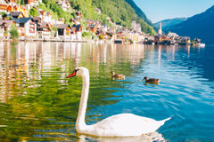 Austria septentrional Hallstatt fotografía de archivo libre de regalías