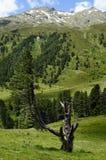 Austria, Tirol, Kaunertal Zdjęcia Royalty Free