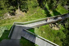 Austria, Tirol, natura Obrazy Stock