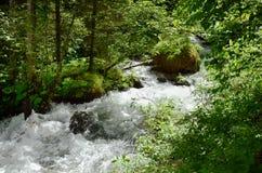 Austria, Tyrol, halny strumień Zdjęcie Stock