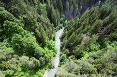Austria, Tyrol, krajobraz Obraz Stock