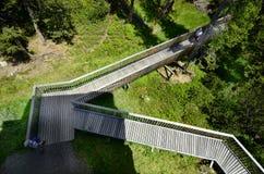 Austria, Tyrol, natura Obraz Royalty Free