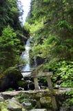 Austria, Tyrol, natura Zdjęcia Royalty Free
