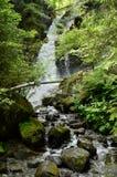 Austria, Tyrol, natura Zdjęcie Stock