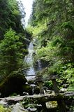 Austria, Tyrol, natura Zdjęcie Royalty Free