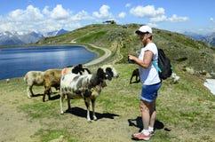 Austria, Tyrol, Pitztal Stock Photography