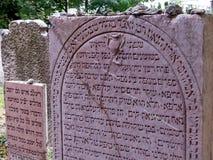 Austria, vienna, jewish cemetery Royalty Free Stock Images