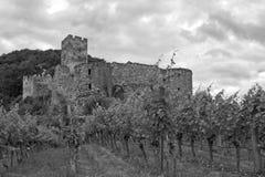 Austria, Wachau, Castle Hinterhaus Stock Photography