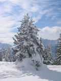 Austria / Winter landscape. Shot taken in the popular skiing area Schladming (Planai) in Austria stock photography