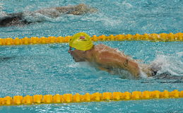 Austriacka pływaczka Sebastian STEFFAN AUT Fotografia Stock
