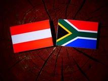 Austriak flaga z południe - afrykanin flaga na drzewnym fiszorku odizolowywającym Zdjęcia Stock