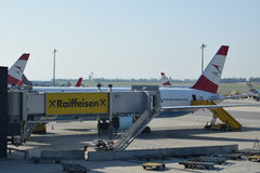 Austrian Airlines Boeing 767-300er med winglets på porten på den Wien flygplatsen Royaltyfria Foton