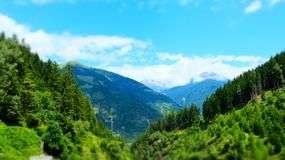 Austrian alpine green summer forest, Raggachlucht, Austria. Austrian vibrant green summer forest in the alps royalty free stock photos