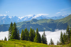 Austrian alps salzburg leogang. Blue sky morning fog beautiful scenery austrian alps in summer Stock Image
