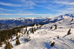 Austrian Alps Ski Slope With Trees Stock Photography