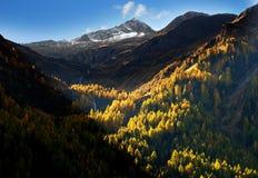 Austrian Alps sunlit Stock Photos