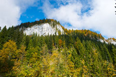 Austrian autumn landscape Stock Photography