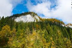 Austrian autumn landscape stock photography
