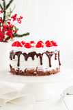 Austrian Black Forest cake. Royalty Free Stock Photography