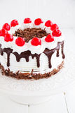 Austrian Black Forest cake. Stock Photo