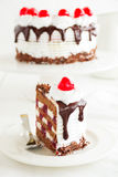 Austrian Black Forest cake. Stock Photos