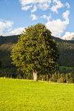 austrian countryside landscape Stock Images