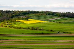 Fields in Austria landscape in spring. Austrian Fields in spring landscape Royalty Free Stock Images
